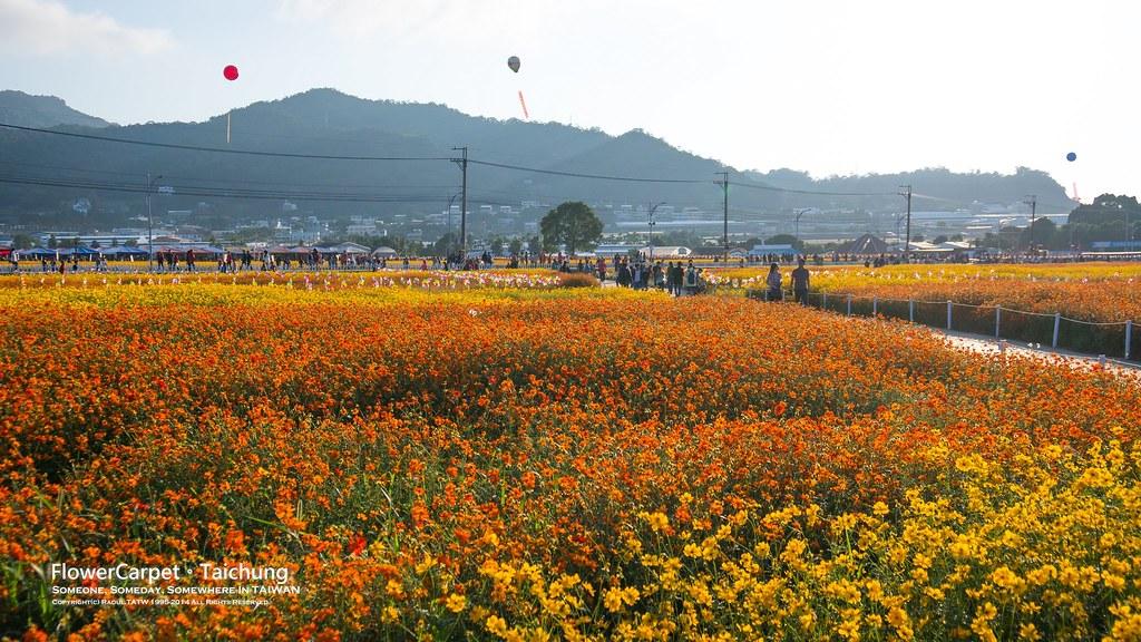 2014台中花毯節