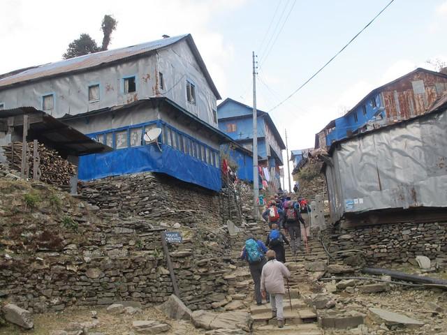 Annapurna TreK: Day 4 Ulleri to Gorepani