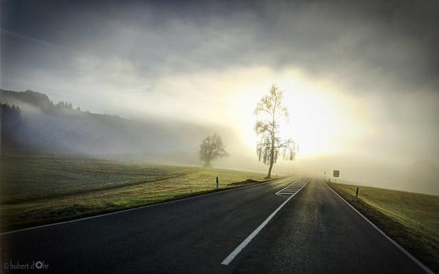 Hubert Dohr - Morgensonne / morning sun