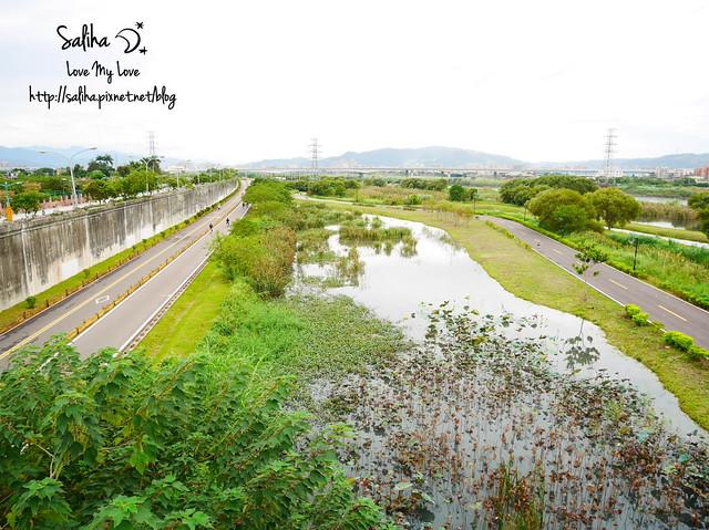 板橋景點新月橋 (8)