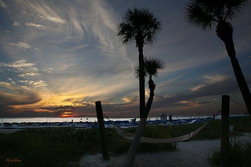 sunset reflection beach gulfofmexico water silhouette sand waves florida run palmtrees hammock np cloudscape stpetersburgbeach sabalpalms cabbagepalm wyojones tradewindsresortandhotel