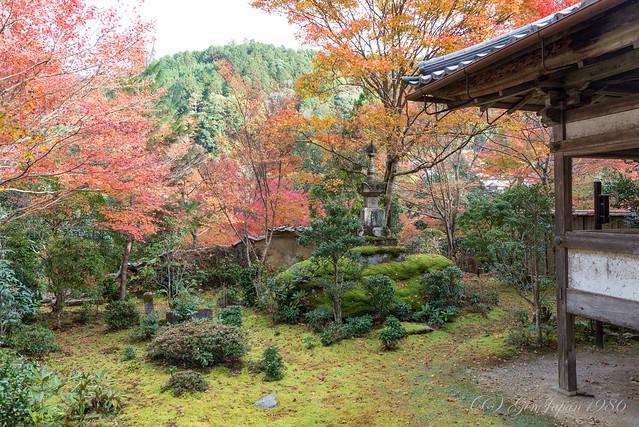 西明寺 庭園
