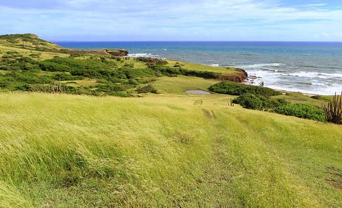 ocean sea mer green grass meer vert atlantic grün atlanticocean stlucia prarie westindies atlanticcoast atlanticside