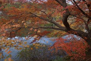 061 Tuinen Ryoan-ji temple