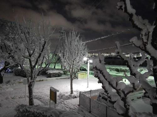元旦の雪景色