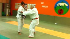 hapkido, individual sports, contact sport, sports, tang soo do, combat sport, martial arts, karate, judo, taekkyeon, black belt, japanese martial arts, jujutsu,