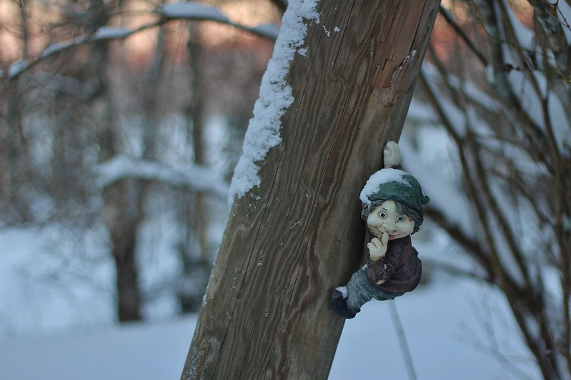 little elf on a tree