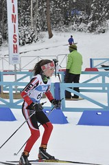 winter sport, nordic combined, individual sports, ski cross, skiing, sports, recreation, outdoor recreation, slalom skiing, cross-country skiing, downhill, nordic skiing,