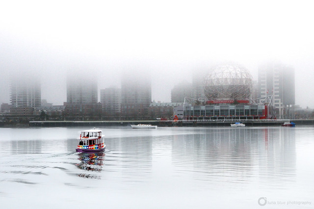False Creek Morning Fog