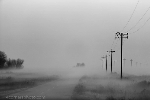 california road winter blackandwhite tree weather fog clouds rural landscape scenery unitedstates vegetation northamerica telephonepole centralvalley losbanos sanjoaquinvalley mercedcounty mudslough 4cornersphoto