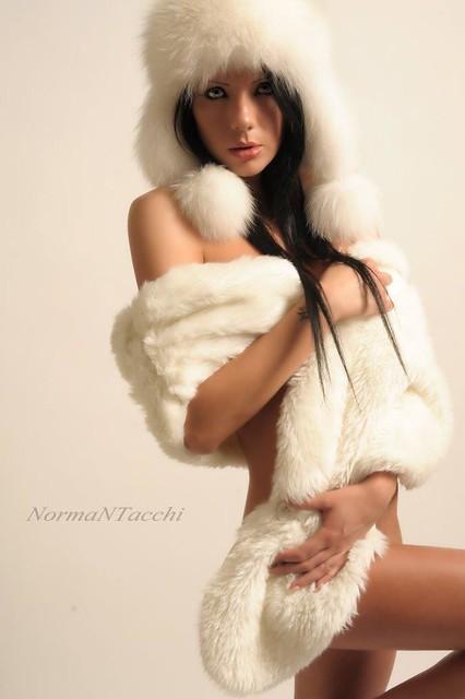 Norman Tacchi - NormaNTacchi . nuovi freddi