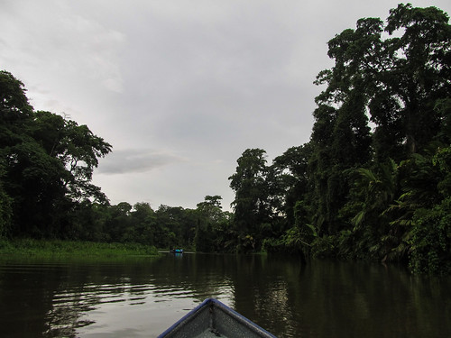 Tortuguero: excursion en barque