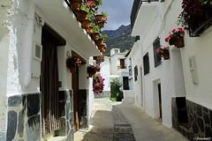 Trevelez (Granada)