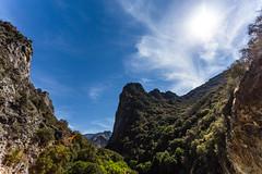 Kings Canyon & Sequoia - 290