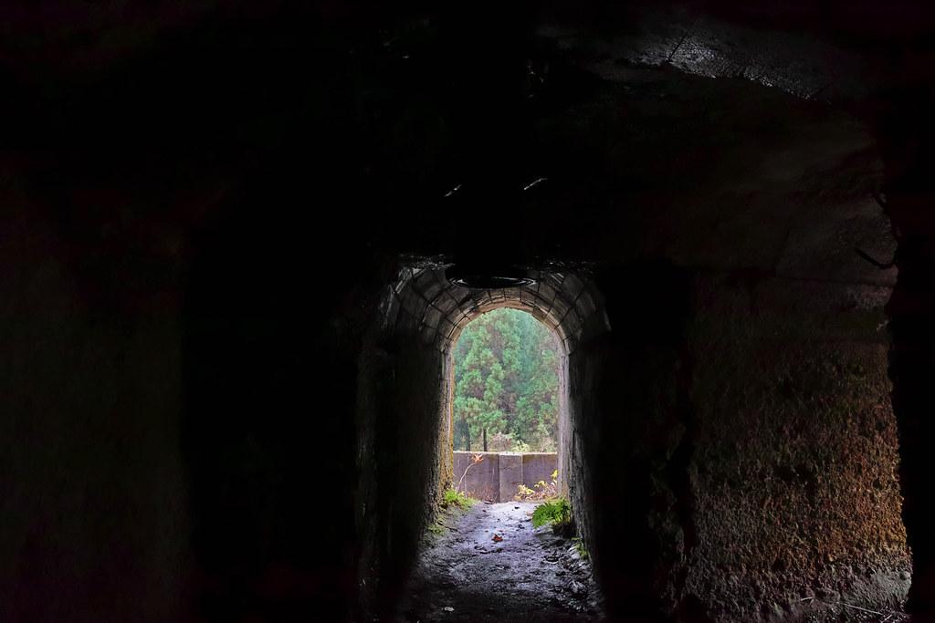 穴の中に潜入
