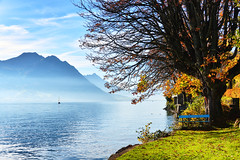 Vierwaldstättersee- Lake Luzern in autumn