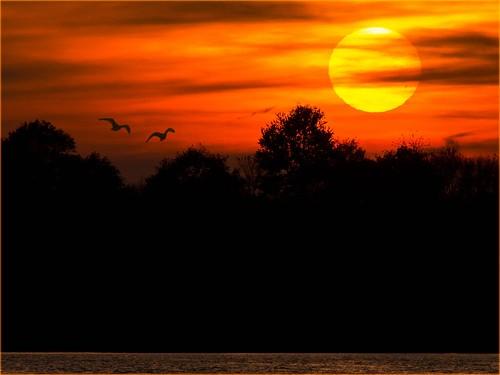 sunset sky sun lake germany deutschland see sonnenuntergang eveningsun himmel sonne schleswigholstein abendsonne 2014 abendlicht ostseeleuchte oktober2014
