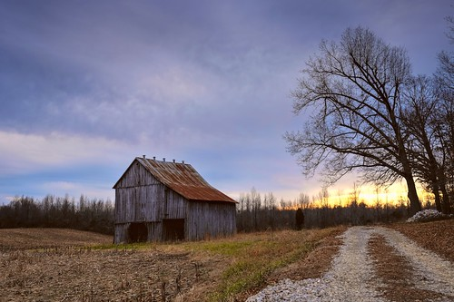 road light sunset tree field barn rural path kentucky ky hopkinscounty explorekentucky