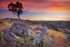 Boulders Of The Sunset || Kanimbla Valley || NSW