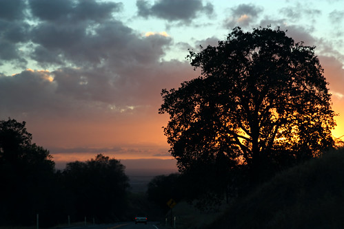 california sunset usa tree unitedstates sanger ooolookit