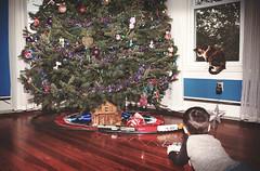 {Julian 365} Day 170 - Julian's Christmas Train Set