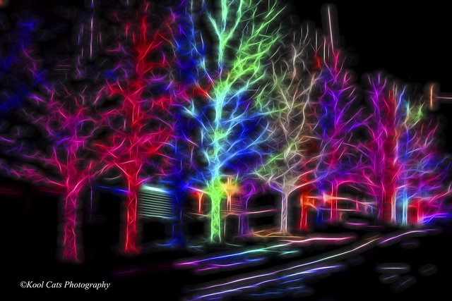 Neon Christmas from Flickr via Wylio