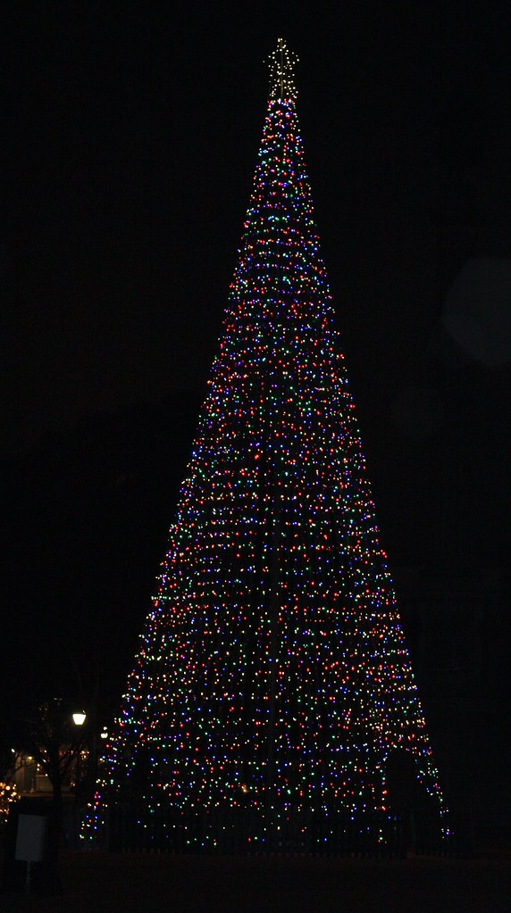 Charleston Christmas Tree outside Embassy Suites