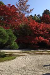 月, 2014-11-10 21:16 - 天授庵(南禅寺塔頭)