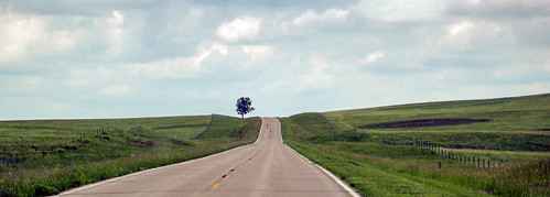 tree highway nebraska roadtrip ne roads plains rolling lonetree greatplains timbrown