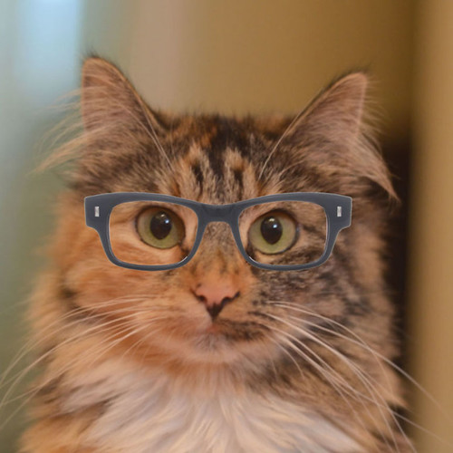 Wylla_Glasses_3