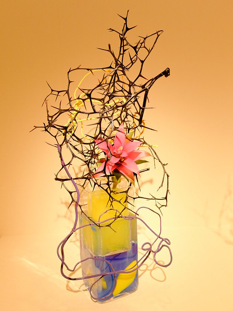 Yuho Kibata The 96th Sogetsu Annual Exhibition 2014 Autumn 22