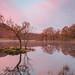 Pre-Dawn Light by Thomas Heaton