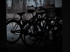 Bikes at their resting place