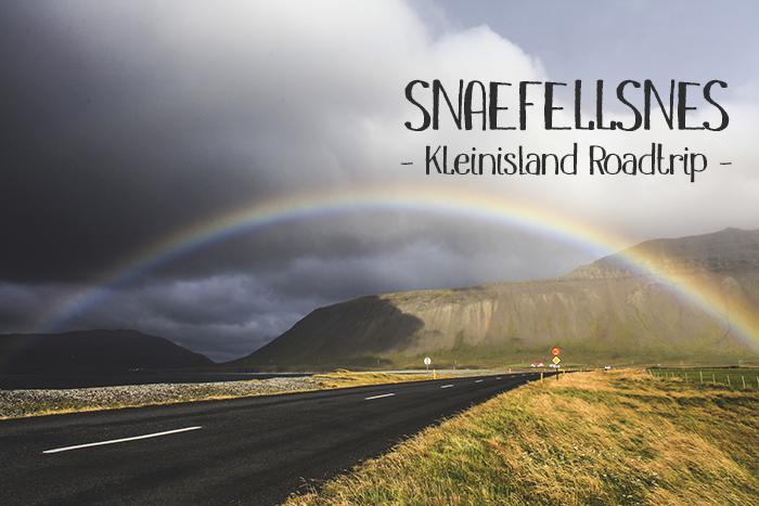 Iceland_Spiegeleule_August2014 159