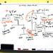 org chart by simonov