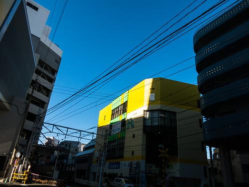 shizuoka1412- (8 - 10)