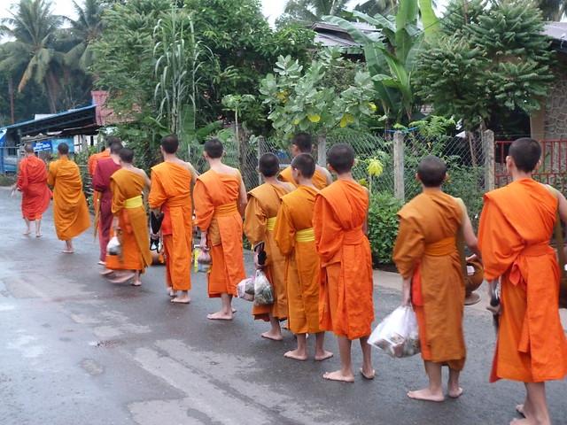 Monjes en la ceremonia de entrega de limosnas en Luang Prabang (Laos)