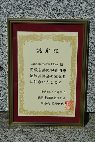 Floors Koi Shop Jureert op de Nagaoka Koi Show 2014