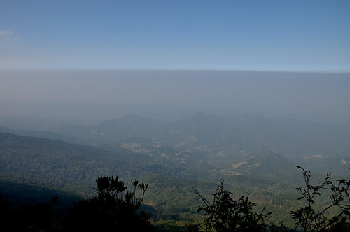 加里山-杜鵑嶺觀景台