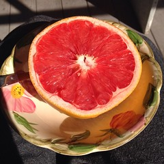 orange(0.0), plant(0.0), produce(0.0), grapefruit(1.0), citrus(1.0), blood orange(1.0), fruit(1.0), food(1.0),