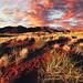 The Namib Desert, Namibia by Ramin Hossaini