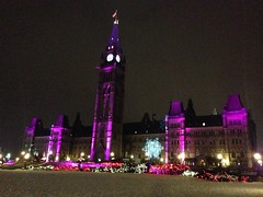 Walkabout: Parliament Hill