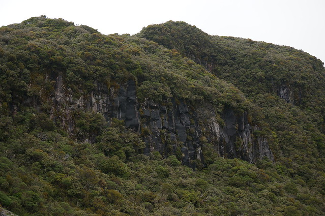 Volcanic cliffs were common