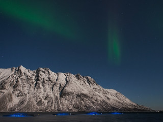 Aurora & fish farm