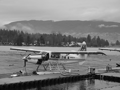 aviation, airplane, wing, vehicle, sea, lake, monochrome photography, seaplane, monochrome, black-and-white,