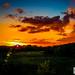Meadow Lane Sunset