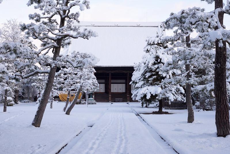 雪の知恩寺