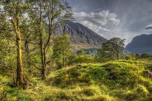 wood morning trees light shadow sky sun sunlight mountains grass clouds forest landscape scotland nikon raw hills fells vista glencoe grasses mound grassland hdr mounds coppice 3xp photomatix tonemapped handheldhdr nikond600