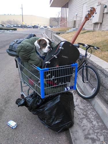 Homeless on the Streets, Homeless Man's Dog in a Shopping Cart | by Beverly & Pack