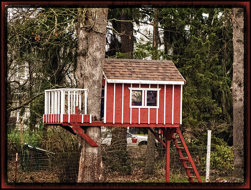 Little Red Tree House